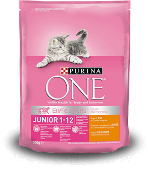 Junior Purina ONE