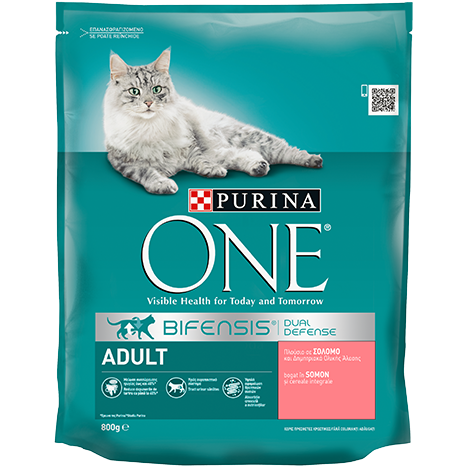 PURINA ONE ADULT cu Somon și Cereale Integrale