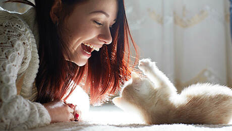 White kitten playing with owner